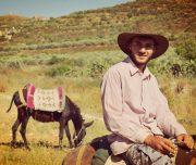 Sebastia-Donkey-Tours-Palestine_(12)