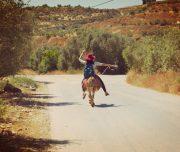 Sebastia-Donkey-Tours-Palestine_(3)