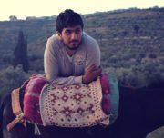 Sebastia-Donkey-Tours-Palestine_(4)