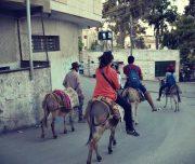 Sebastia-Donkey-Tours-Palestine_(5)