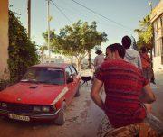 Sebastia-Donkey-Tours-Palestine_(7)