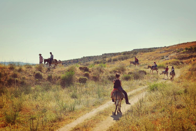 sebastia-donkey-tours-palestine