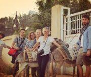 Donkey-tours-jericho-palestine (25)