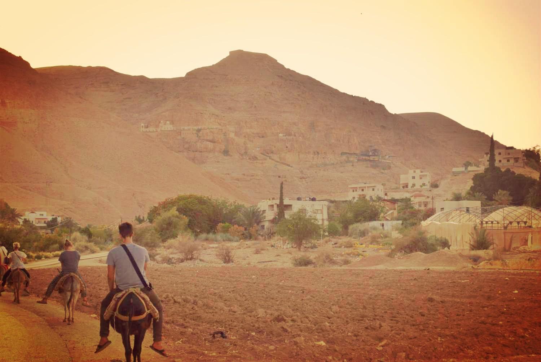 Donkey-tours-jericho-palestine (27)