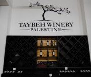 taybeh-winery4