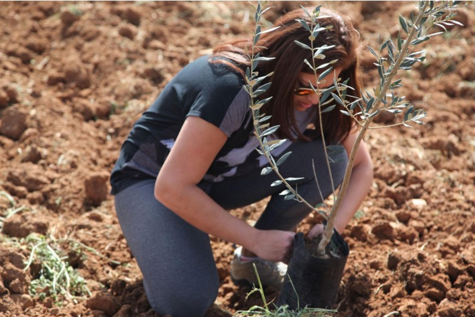 Tree Planting Program (1-9 FEB 2020)